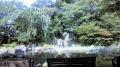 靖国拝殿裏庭園